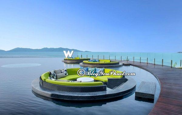 Ở đâu khi đi du lịch Koh Samui? Khách sạn cao cấp ven biển Koh Samui đẹp, tiện nghi đầy đủ