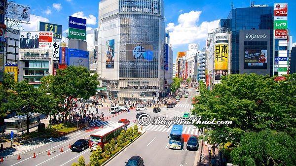 Đi đâu chơi khi du lịch Tokyo? Địa điểm du lịch ở Tokyo giá rẻ, nổi tiếng nhất