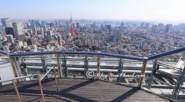 Những địa điểm du lịch đẹp tại Tokyo: Địa điểm tham quan, vui chơi hấp dẫn, nổi tiếng ở Tokyo