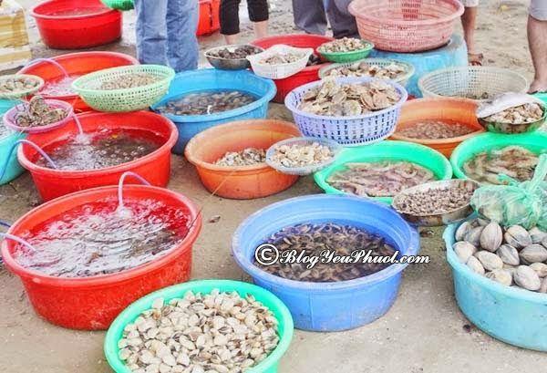 Địa chỉ mua hải sản tươi sống ngon nhất Đà Nẵng: Nơi bán hải sản tươi sống mang về giá rẻ ở Đà Nẵng