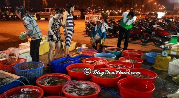 Địa chỉ mua hải sản tươi sống ngon nhất Đà Nẵng: Nơi bán hải sản tươi sống mang về ở Đà Nẵng ngon, giá rẻ