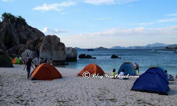 Địa chỉ cho thuê lều trại tại Đà Nẵng: Thuê lều, trại ở đâu Đà Nẵng giá rẻ, chất lượng tốt?