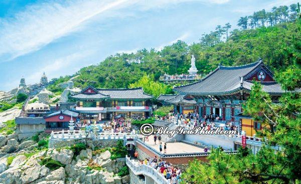 Du lịch Busan nên đi đâu chơi?
