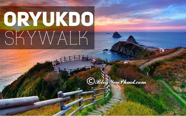 Địa điểm tham quan nổi tiếng ở Busan: Danh lam thắng cảnh đẹp, nổi tiếng ở Busan