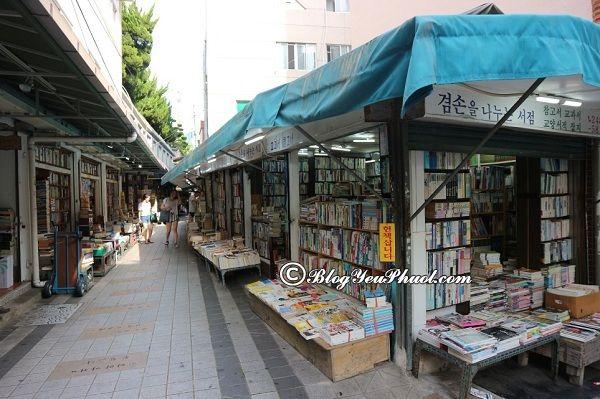 Điểm du lịch được lòng du khách ở Busan, Hàn Quốc? Nên đi đâu chơi khi du lịch Busan?