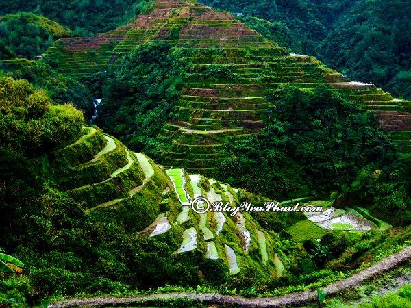 Du lịch philippines nên đi đâu chơi? Địa điểm tham quan, vui chơi, ngắm cảnh, chụp ảnh đẹp ở Philippines