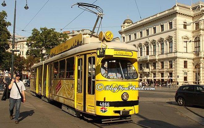 Đi lại bằng phương tiện gì khi đến Vienne?- Phương tiện giao thông công cộng tại Vienne rất đa dạng