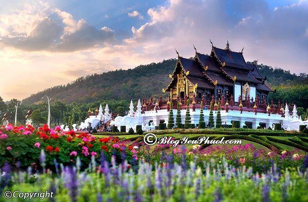 Kinh nghiệm du lịch Chiang Mai 3 ngày 2 đêm: Phượt Chiang Mai 3 ngày 2 đêm nên đi đâu chơi, tham quan, ngắm cảnh, chụp ảnh đep nhất?