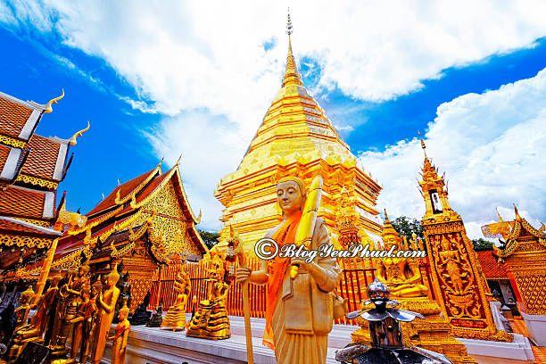 Hướng dẫn tour du lịch Chiang Mai 3 ngày 2 đêm giá rẻ: Du lịch Chiang Mai 3 ngày 2 đêm đi đâu chơi vui, ngắm cảnh đẹp nhất?
