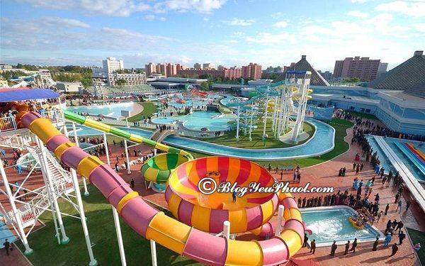 Công viên Sun World Hạ Long có gì đẹp? Những trò chơi thú vị, hấp dẫn ở Sun World Hạ Long Park