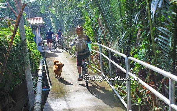 Kinh nghiệm du lịch thái lan bằng đường bộ: Hướng dẫn cách đi du lịch Thái Lan bằng đường bộ an toàn, giá rẻ