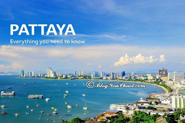Nên ăn ở đâu ngon khi đi du lịch pattaya? Kinh nghiệm ăn uống khi đi du lịch Pattaya?