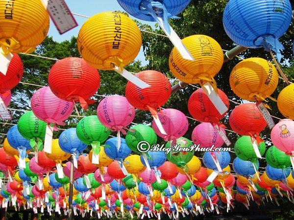 Những lễ hội lớn, nổi tiếng nhất Hàn Quốc: Địa chỉ và thời gian diễn ra các lễ hội văn hóa hàng đầu Hàn Quốc
