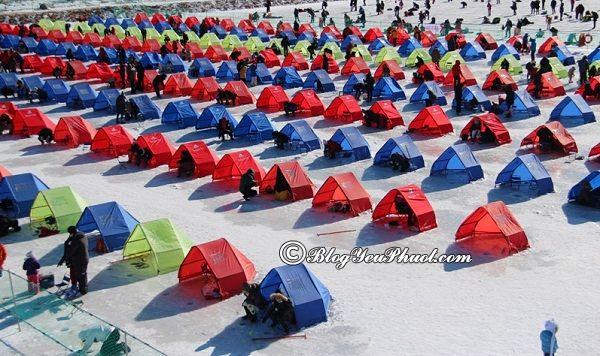 Những lễ hội lớn, nổi tiếng nhất ở Hàn Quốc: Thời gian và địa điểm diễn ra các lễ hội đặc sắc ở Hàn Quốc