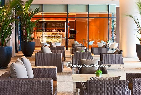 Quán cafe siêu đẹp tại Nha Trang: Uống cà phê ở đâu Nha Trang ngon, giá rẻ, nổi tiếng nhất?