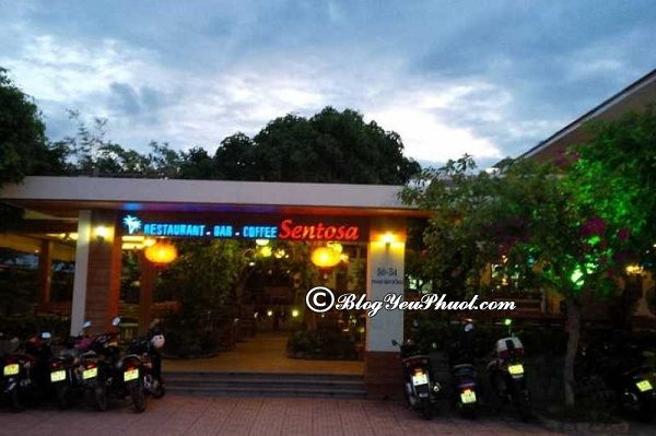 Địa chỉ những quán cafe đẹp tại Nha Trang: Uống cà phê ở đâu Nha Trang ngon, đẹp, giá rẻ?