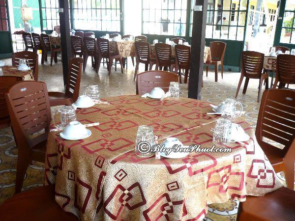 Nhà hàng phục vụ hải sản giá rẻ ở Cửa Lò? Du lịch Cửa Lò ăn hải sản ở đâu ngon, hấp dẫn nhất?