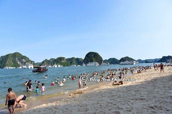 Bãi biển lạ nhất, thú vị nhất ở Quảng Ninh: Quảng Ninh có bãi biển nào đẹp, nổi tiếng?