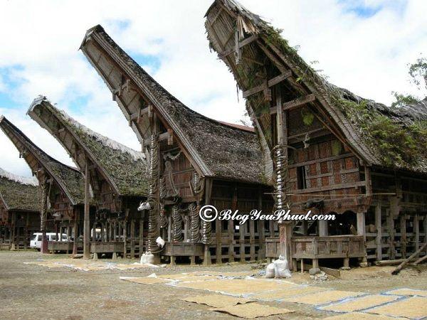 Đi đâu chơi khi du lịch Indonesia? Địa điểm tham quan, vui chơi hấp dẫn, nổi tiếng ở Indonesia
