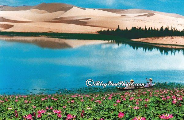 Địa điểm chụp ảnh đẹp ở Phan Thiết: Những nơi tham quan lên hình cực đẹp ở Phan Thiết