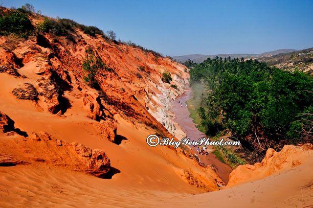Điểm check in không nên bỏ qua ở Phan Thiết: Phan Thiết có địa điểm du lịch nào chụp ảnh đẹp, nổi tiếng?