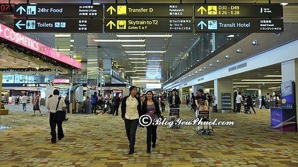 Du lịch Singapore cần lưu ý những điều gì? Một số điều cần biết khi đi du lịch Singapore