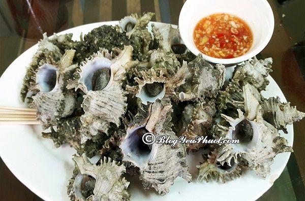 Địa chỉ hải sản ốc ngon nhất ở Hạ Long: Ăn hải sản ở đâu Hạ Long ngon, nổi tiếng nhất?
