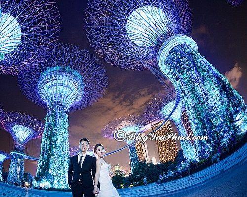 Chụp ảnh ở đâu đẹp nhất tại Singapore? Những địa điểm check in đẹp, độc nhất ở Singapore