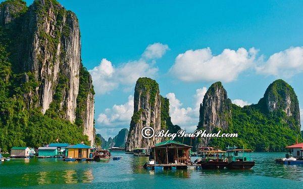 Các địa điểm chụp ảnh đẹp nhất ở Hạ Long: Hạ Long có địa điểm nào chụp ảnh đẹp, nổi tiếng?
