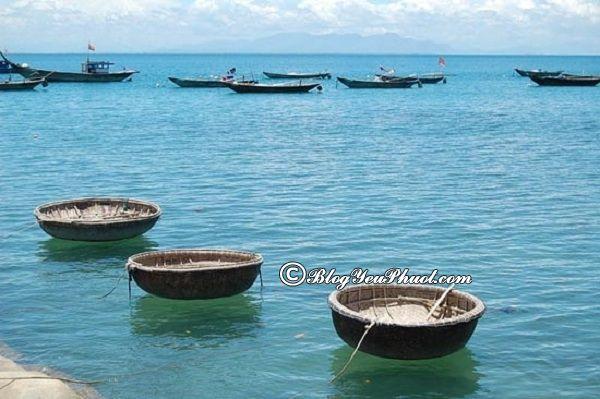 Địa điểm du lịch sinh thái lý tưởng ở Cửa Lò: Phượt biển Cửa Lò nên đi đâu chơi?