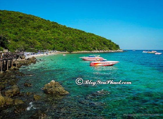 Địa điểm tham quan đẹp nhất ở Pattaya: Du lịch Pattaya đi đâu chơi?