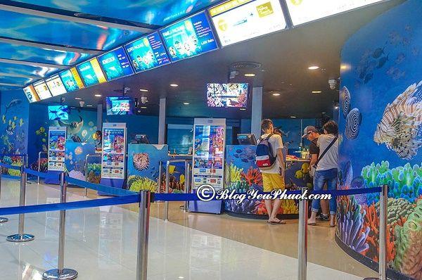 Du lịch Bangkok nên đi đâu chơi, chơi gì hay? Địa điểm vui chơi hấp dẫn ở Bangkok dành cho trẻ em