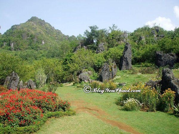 Địa điểm chụp ảnh nổi tiếng ở Sapa: Đi đâu chụp hình khi du lịch Sapa?