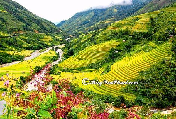 Địa điểm chụp ảnh nên thơ nhất ở Sapa: Địa điểm tham quan ở Sapa lên hình cực đẹp