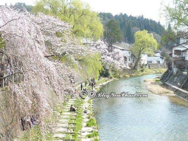 Công viên nổi tiếng ở Nagoya: Địa điểm tham quan, ngắm cảnh, chụp ảnh nổi tiếng ở Nagoya