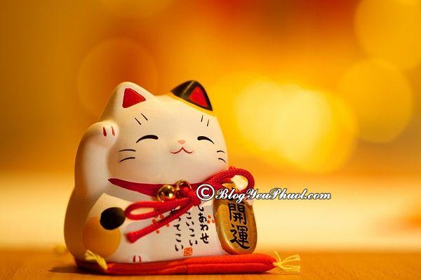 Món quà Nhật Bản mang theo may mắn, thịnh vượng: Nên mua gì làm quà khi đi du lịch Nhật Bản?
