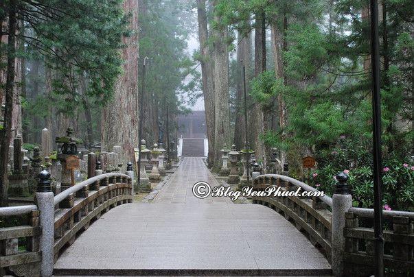Điểm vui chơi đẹp mê hồn ở Kyoto: Nên đi đâu tham quan, du lịch khi đến Kyoto?