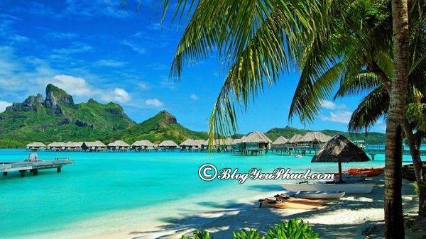 Nên du lịch Phú Quốc vào thời gian nào đẹp? Du lịch Phú Quốc mỗi mùa có gì thú vị?