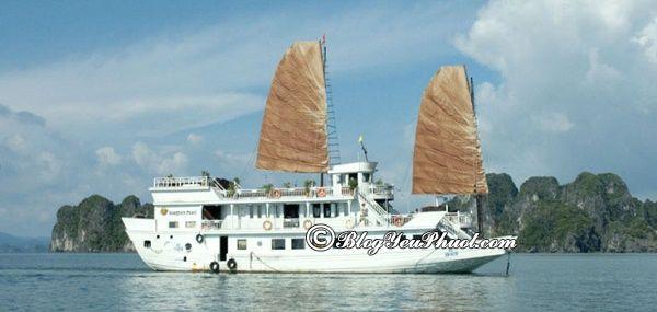Du thuyền hiện đại, tốt nhất trên vịnh Hạ Long