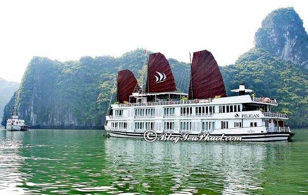 Du thuyền đạt tiêu chuẩn 5 sao ở Hạ Long đẹp, tiện nghi đầy đủ