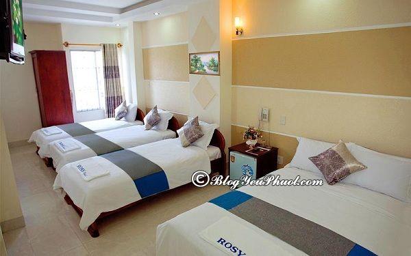 Ở đâu khi du lịch Nha Trang? Các khách sạn ven biển Nha Trang sạch đẹp, tiện nghi nên ở
