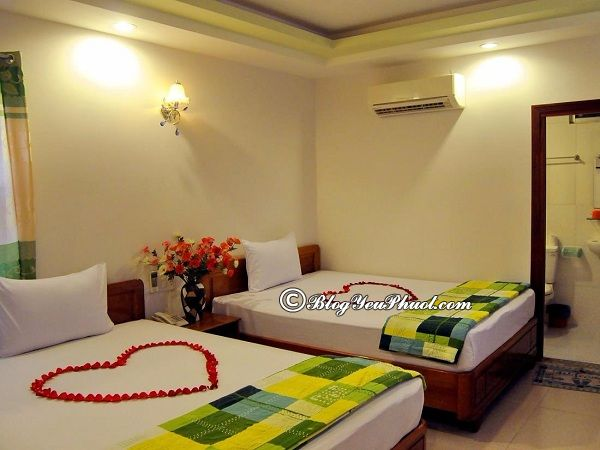 Khách sạn Sunny Sea - Khách sạn ven biển Nha Trang đẹp, tiện nghi, giá rẻ: Nên ở khách sạn nào khi du lịch Nha Trang?