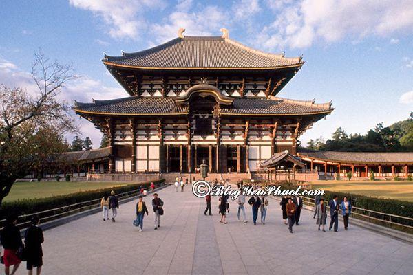 Tham quan ở đâu khi đi du lịch Nagoya? Địa điểm tham quan, vui chơi, ngắm cảnh, chụp ảnh đẹp ở Nagoya
