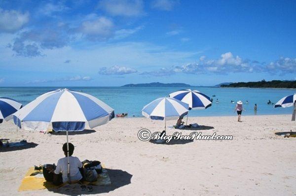 Đến đâu khi du lịch Okinawa? Kinh nghiệm du lịch Okinawa tự túc, giá rẻ