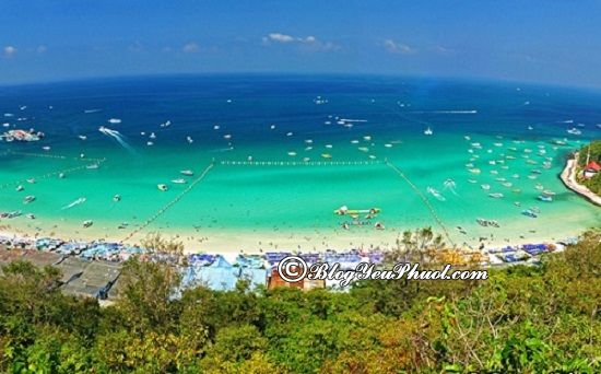 Du lịch Pattaya 3 ngày 2 đêm nên đi đâu chơi? Kinh nghiệm du lịch Pattaya 3 ngày 2 đêm