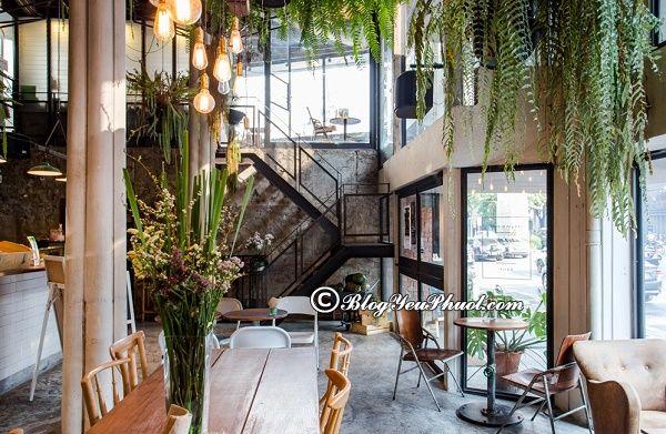 Địa chỉ ăn chay ngon ở Bangkok: Du lịch Bangkok ăn chay ở đâu ngon, giá rẻ?