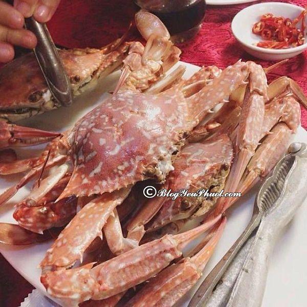 Nhà hàng chất lượng, uy tín, giá thành phải chăng ở Hạ Long: Ăn ở đâu khi du lịch Hạ Long?
