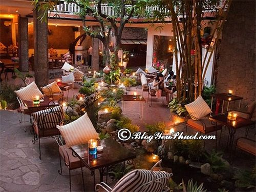 Quán cafe có không gian đẹp ở Sài Gòn: Địa chỉ uống cafe ngon, nổi tiếng ở Sài Gòn
