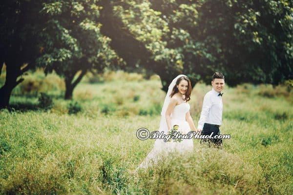 Vườn nhãn Gia Lâm - Địa điểm chụp ảnh cưới được yêu thích ở Hà Nội: Nên chụp ảnh cưới ở đâu Hà Nội?