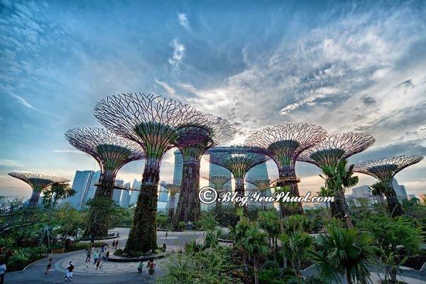 Đi đâu chơi khi du lịch Singapore vào buổi tối? Những địa điểm du lịch về đêm hấp dẫn nhất Singapore